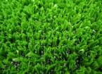 Tenax Стандард Грин – искусственная трава